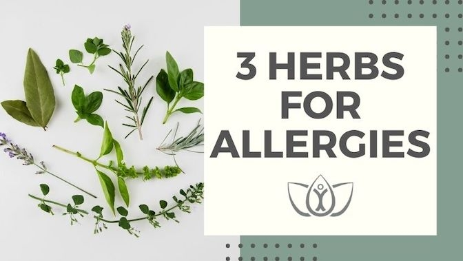 3 Herbs for Allergies