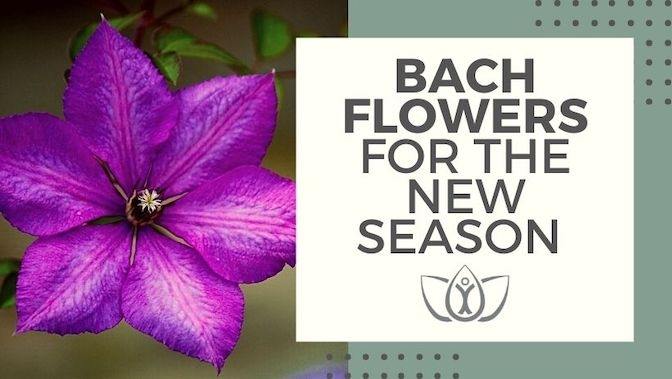 Bach Flowers For The New Season